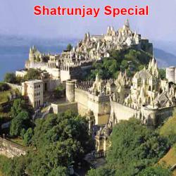 Shatrunjay-Special-3