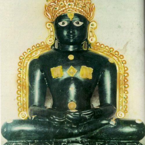 Shri Adinath  Chittodagadha