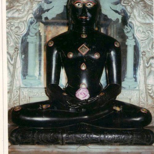 Shri Neminath-Bhorol